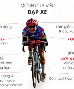 loi ich cua viec di xe dap the thao AIO 247x296 - 5 lợi ích của việc đạp xe đạp và giới thiệu nơi bán xe đạp giá rẻ nhất